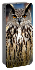 Wise Forest Mountain Owl Spain Portable Battery Charger