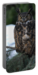 Portable Battery Charger featuring the photograph Wise Old Owl by Sharon Elliott