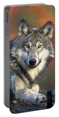 Portable Battery Charger featuring the photograph Wolf Predator Canidae Canis Lupus Hunter by Paul Fearn