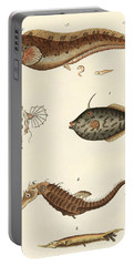 Wonderful Fish Portable Battery Charger by German School