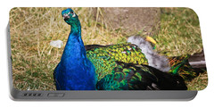 Portable Battery Charger featuring the photograph Wondering Male Peacock by Eti Reid