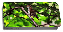 Wood Thrush Singing Portable Battery Charger by Chris Flees