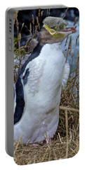 Endangered Yellow Eyed Penguin Hoiho Portable Battery Charger by Venetia Featherstone-Witty