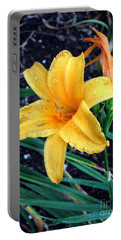 Portable Battery Charger featuring the photograph Yellow Flower by Sergey Lukashin