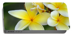 Yellow Frangipani Flowers Portable Battery Charger