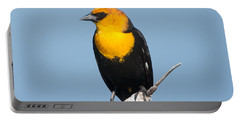 Portable Battery Charger featuring the photograph Yellow Headed Blackbird by Jack Bell