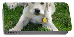 Yellow Lab Puppy Got A Ball Portable Battery Charger