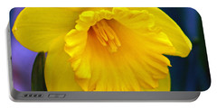 Portable Battery Charger featuring the photograph Yellow Spring Daffodil by Kay Novy