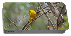 Yellow Warbler Portable Battery Charger by Karen Silvestri
