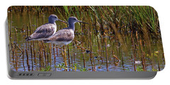 Portable Battery Charger featuring the photograph Yellowlegs Of Texas by Gary Holmes
