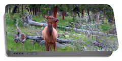 Yellowstone Moments. Doe Portable Battery Charger by Ausra Huntington nee Paulauskaite
