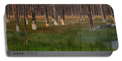 Portable Battery Charger featuring the photograph Yellowstone Mysterious Morning by Teresa Zieba