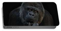 Ape Portable Battery Chargers