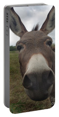 Portable Battery Charger featuring the photograph You Looking At My Woman by Peter Piatt