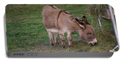 Young Donkey Eating Portable Battery Charger