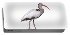 Portable Battery Charger featuring the photograph Young Ibis Gazing Upwards by John M Bailey
