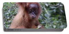 Young Orangutan Kiss Portable Battery Charger