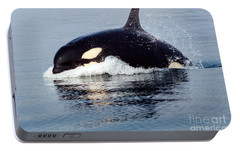 Portable Battery Charger featuring the photograph Young Orca Off The San Juan Islands Washington 1986 by California Views Mr Pat Hathaway Archives