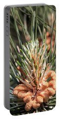 Young Pine Cone  Portable Battery Charger by Ramabhadran Thirupattur