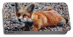 Young Red Fox Watches Squirrel Portable Battery Charger by Diane Alexander