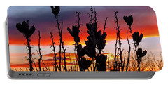 Yucca Sunset Portable Battery Charger
