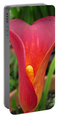 Zantedeschia Named Red Sox Portable Battery Charger