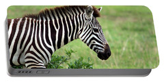 Zebra Portable Battery Charger by Aidan Moran