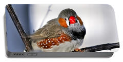 Zebra Finch Portable Battery Charger