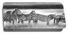 Zebra Panarama Portable Battery Charger