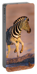 Zebras Jump From Waterhole Portable Battery Charger
