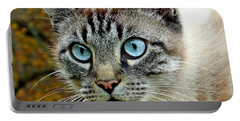 Zing The Cat Upclose Portable Battery Charger