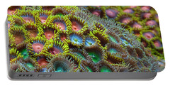 Zoanthids Portable Battery Charger