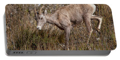 Bighorn Ewe Portable Battery Charger