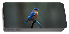 Eastern Bluebird On Perch 2 Portable Battery Charger