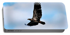 Portable Battery Charger featuring the photograph  Juvenile Bald Eagle by Peggy Franz