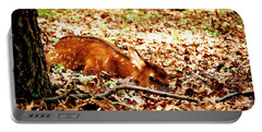 Portable Battery Charger featuring the photograph  Sweet Baby Elk by Peggy Franz
