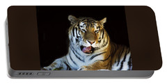 Awaking Tiger Portable Battery Charger