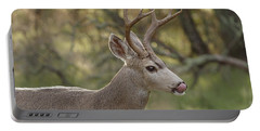 Portable Battery Charger featuring the photograph Black-tailed Deer by Doug Herr