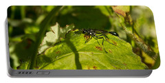 Black Wasp 1 Portable Battery Charger