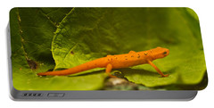 Easterm Newt Nnotophthalmus Viridescens 2 Portable Battery Charger