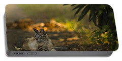 Evening Glow Portable Battery Charger by Kim Henderson