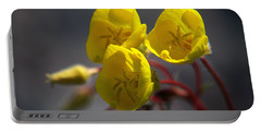 Portable Battery Charger featuring the photograph Desert Evening Primrose by Joe Schofield