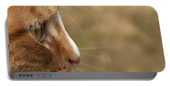 Portable Battery Charger featuring the photograph Flitwick The Cat by Jeannette Hunt