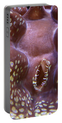 Giant Clam In Pink With Yellow Spots Portable Battery Charger