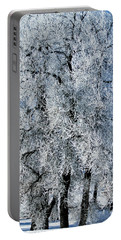 Iced Portable Battery Charger by Colleen Coccia