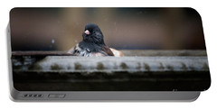 Portable Battery Charger featuring the digital art Junco In The Birdbath by Carol Ailles