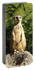 Portable Battery Charger featuring the photograph Sentinel Meerkat by Carla Parris