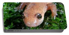 Spring Salamander Portable Battery Charger by Ted Kinsman
