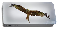 Red Kite In Flight Portable Battery Charger