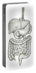 Digestive System Portable Battery Charger